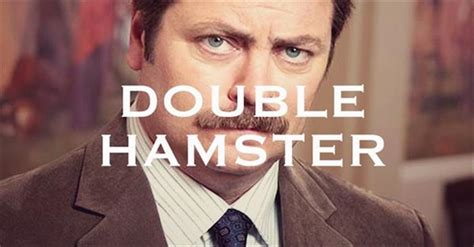 The Funniest Names For Mustaches You'll See All Day - 17 Pics