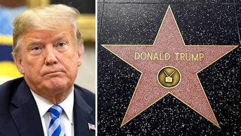 Trump's Star on the Hollywood Walk of Fame Is Put 'Behind