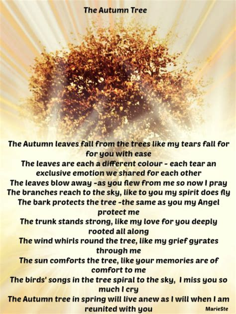 The Autumn Tree   The Grief Toolbox
