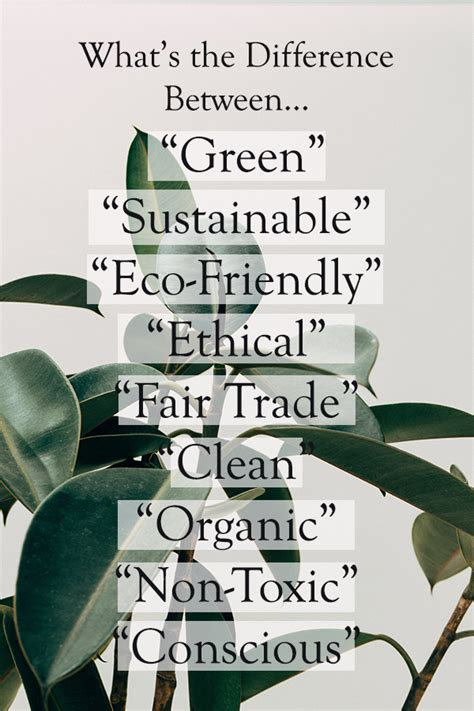 What's the Difference Between Green, Sustainable, Eco