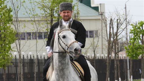 Crazy horse! Chechen leader asks Germany to say sorry to